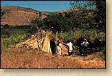 Muwkema Ohlone Indian Tribe